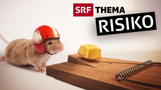 SRF-«Risiko-Woche»