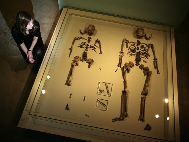 Blick auf einen Schaukasten aus Glas, in dem zwei menschliche Skelette liegen.