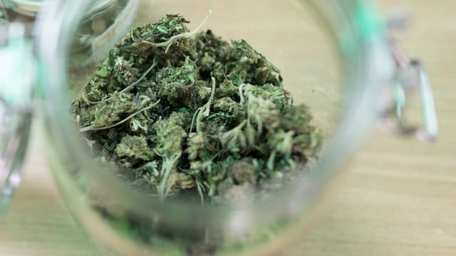Ein Glas mit Cannabisblüten.