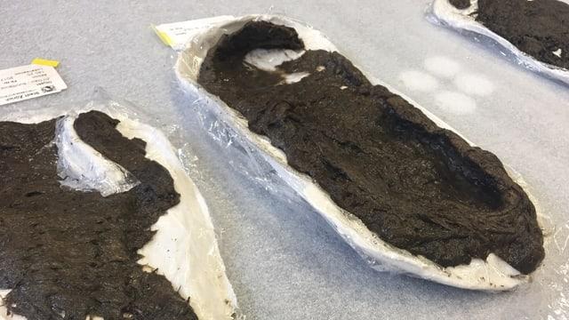 Der 5000 Jahre alte Schue wurde bei Grabungen in Maur entdeckt.