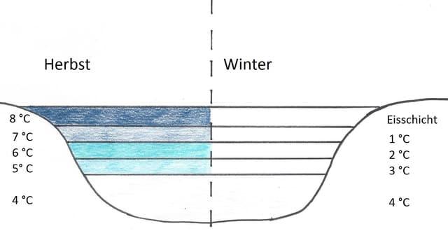 Grafische Darstellung von Temperaturen eines Sees.