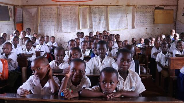 Eine Schulklasse sitzt in einem Schulzimmer