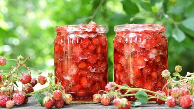 Zwei Einmachgläser sind randvoll mit Erdbeermarmelade gefüllt. Im Vordergrund liegen Walderdbeeren.