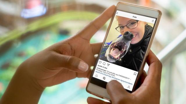 Ein Smartphone in einer Hand. Auf dem Bildschirm ist eine Frau mit einem Hund.