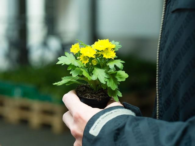 Blumen zur Begrüssung - überreicht von Anic Lautenschlager.