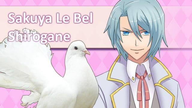 Eine Taube steht vor einer Manga-Figur.