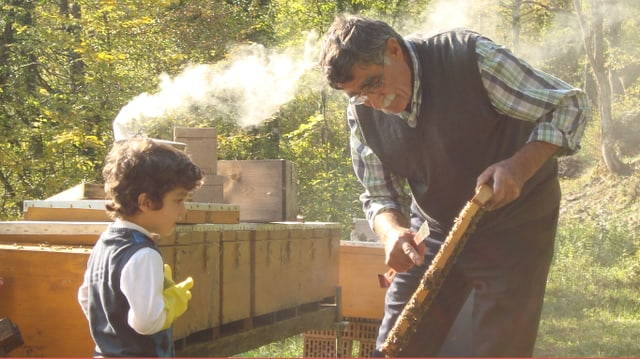 Video «Der Imker - Die unglaubliche Geschichte von Ibrahim Gezer» abspielen
