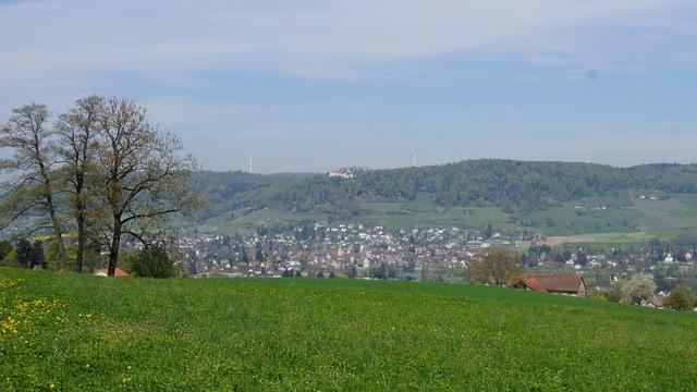 Blick auf die Hügellandschaft bei Hemishofen, wo eine Windenergieanlage entstehen soll.