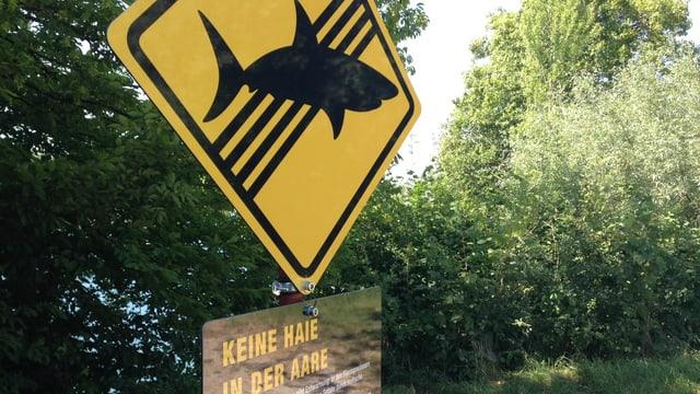 Orange-schwarzes Schild mit einem Hai drauf