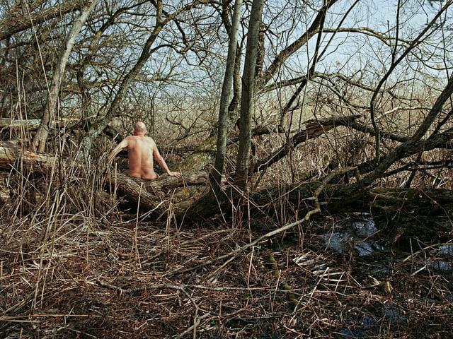 Ein nackter Mann sitzt auf dem Ast eines Baumes, man sieht den Rücken.