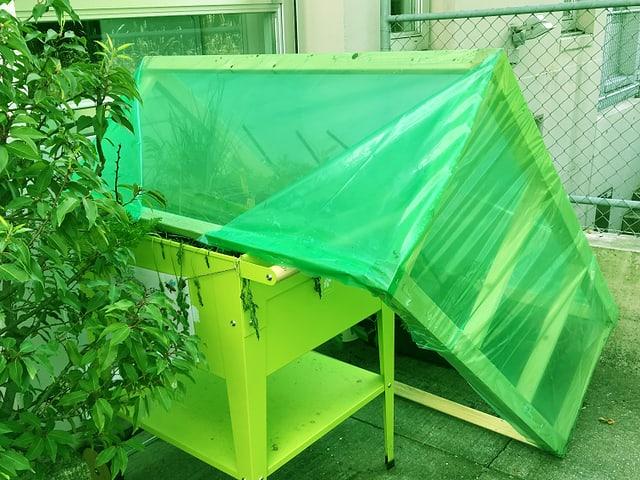 Das grüne Zambogartenhäuschen ist über das Beet gekippt und hat die Serra zerdrückt.