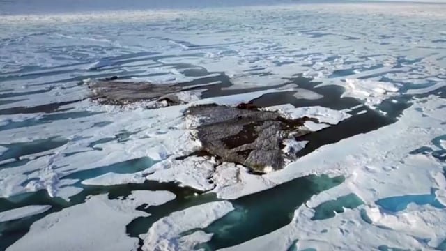Forscher entdecken nördlichste Insel der Welt