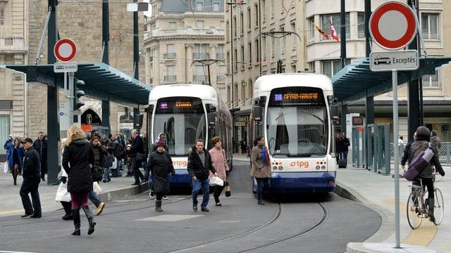 Zwei Trams an einer Haltestelle.