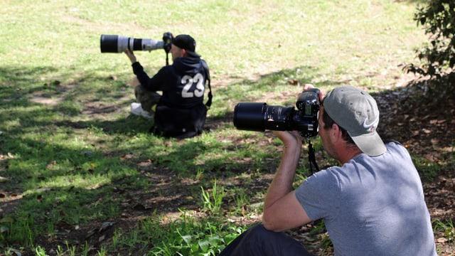 Zwei Paparazzi sitzen im Gras, die Kamera im Anschlag