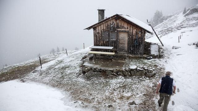 Schnee Alp