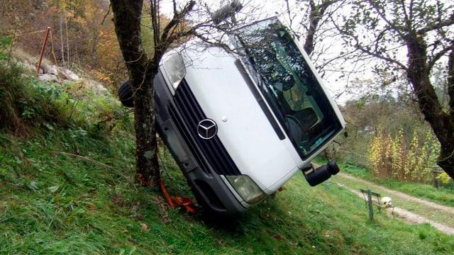 Ein Lieferwagen steht schräg an einem Baum auf einer Wiese.