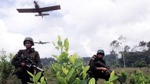 Drogenkrieg in Kolumbien
