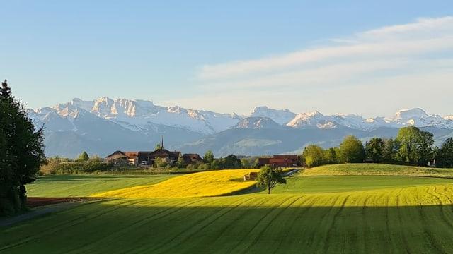 Blick von Seegräben Richtung Alpen.
