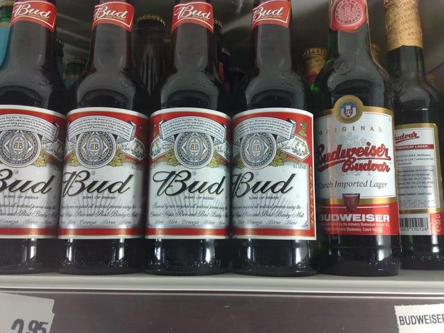 Bierflaschen mit Aufschrift Bud und Budweiser.