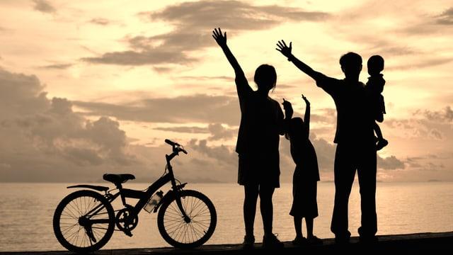 Video «Fassade heile Familie» abspielen