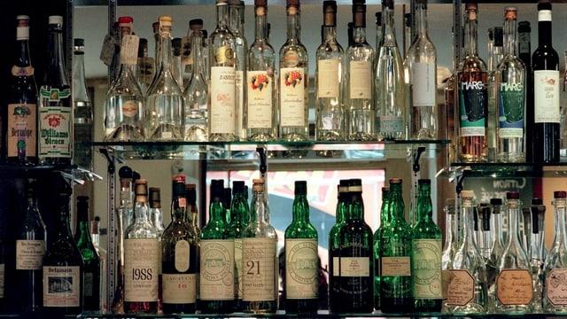 Video «Alkoholverbot: Sturm im Schnapsglas?» abspielen