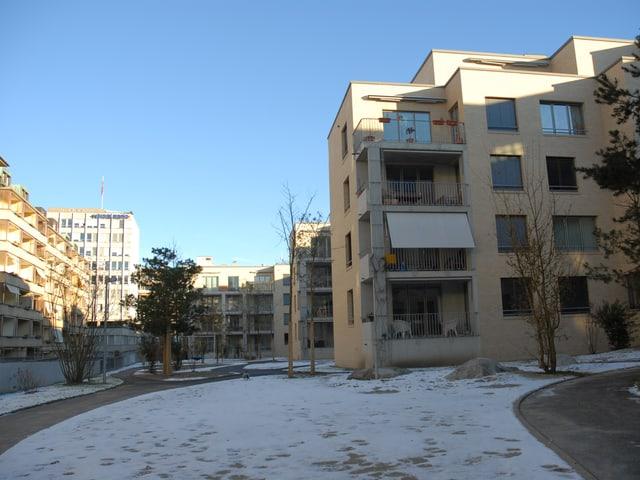 Park mit Bäumen und Sträuchern hinter der Wohnüberbauung.