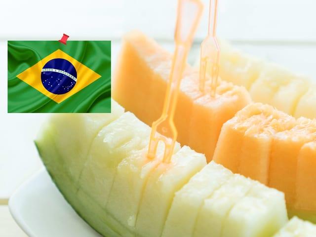 Melonenschnitze