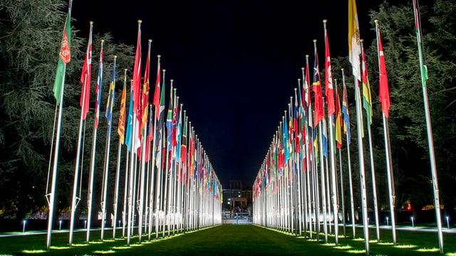 las bandieras da las naziuns da la onu avant il palais des nations a genevra