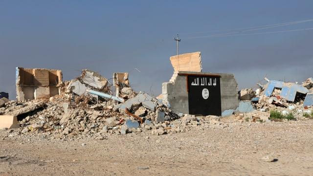 Die Flagge der IS ist auf eine Hausruine gemalt, dahinter sind zerstörte Gebäude sichtbar.