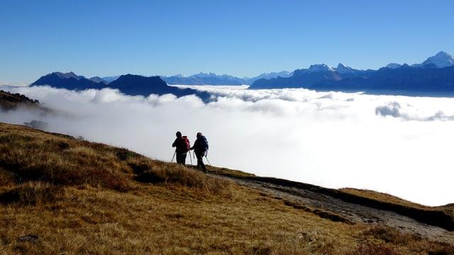 Wanderer über dem Hochnebel, wolkenloser Himmel.