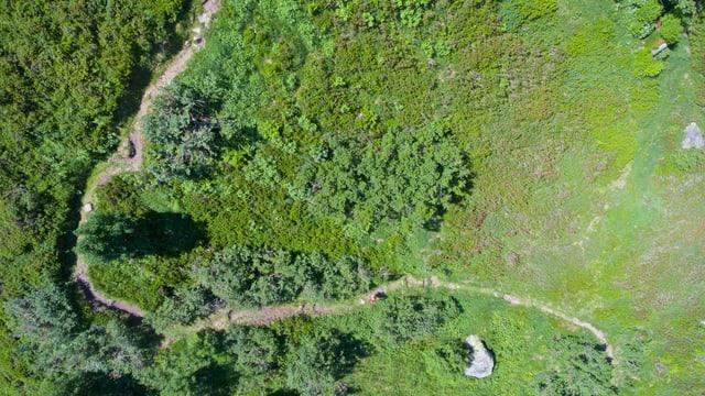 Rheinquelle Trail