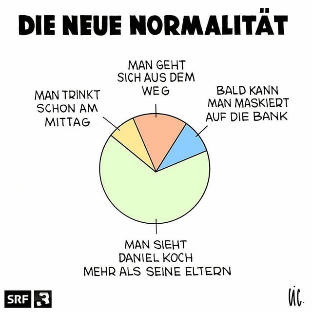 SRF 3-Cartoon