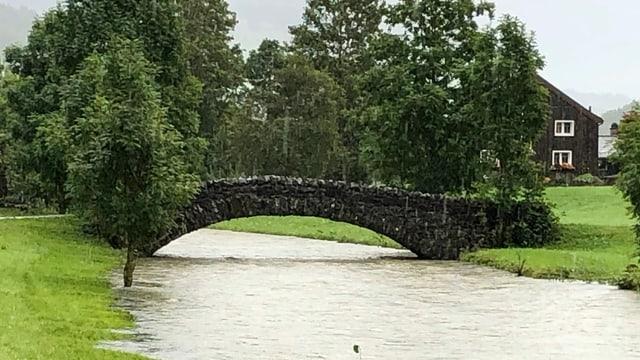 Eine Brücke bei Unterwasser über die Thur, welche Hochwasser führt.