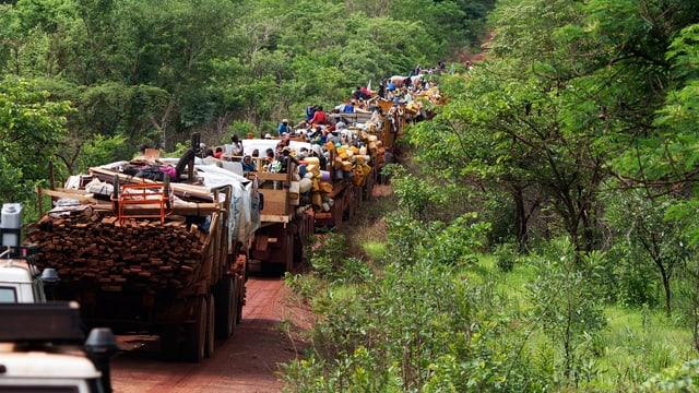 Ein Flüchtlingsstrom auf dem Weg in den Tschad.