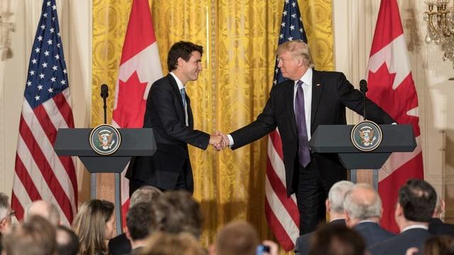 Video «Justin Trudeau» abspielen