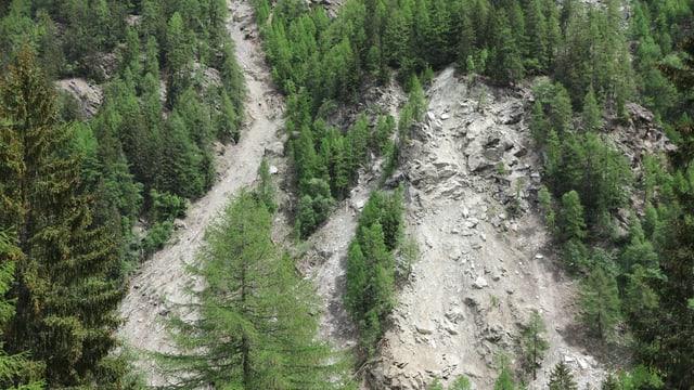 Lawinenniedergang und Steinschlag reissen Bäume mit.