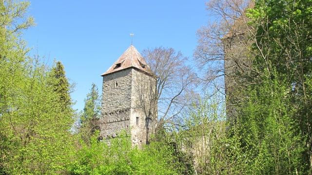 Turm des Gottlieber Schlosses