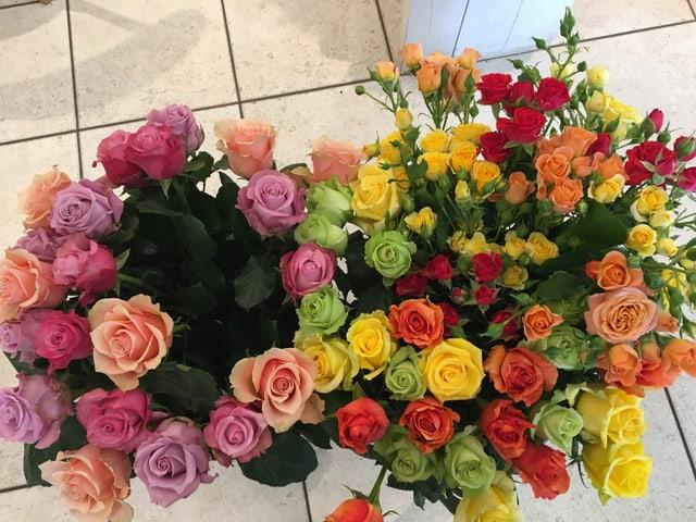 flurs, rosas