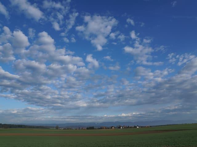 Viele Schäfchenwolken, als Gewitterboten über dem Mittelland.