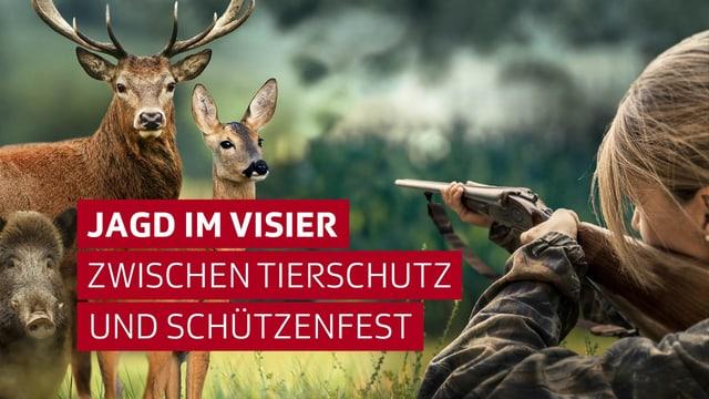 Jagd im Visier: Zwischen Tierschutz und Schützenfest