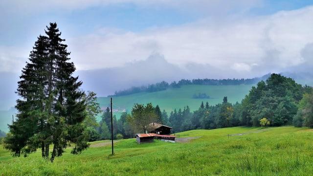 Hochnebelartige Wolken lagen am Sonntagvormittag über dem Eigenthal.