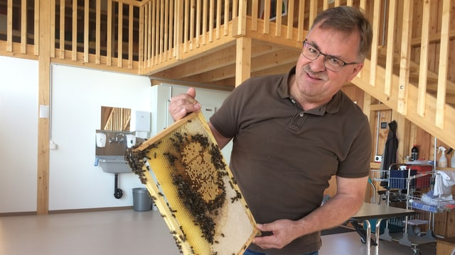 Imker hält Bienenwabe in der Hand. Er steht im Bienenhaus drinnen.