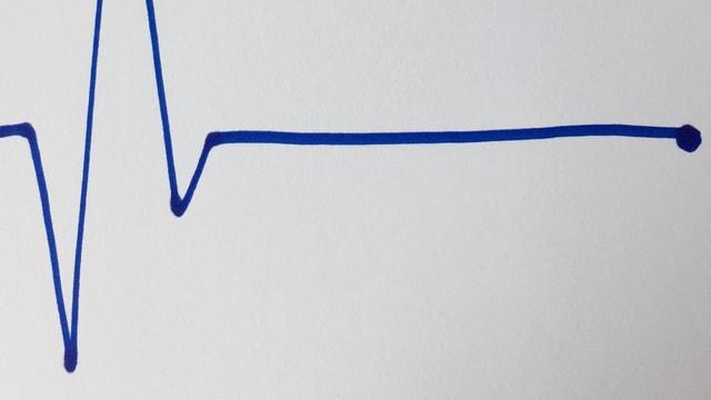 EKG-Diagramm mit  Herzstillstand gezeichnet von Annette König