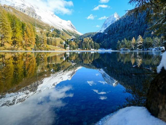spiegelder See, goldene Lärchen.