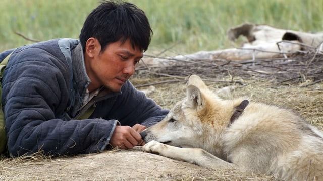 «Wolf Totem 3D»