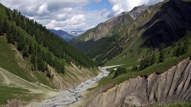 Tal mit Wiesen und Waldflecken