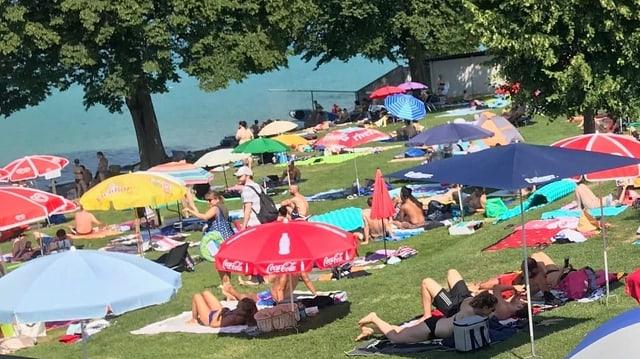 Personen mit Sonnenschirmen auf Liegewiese