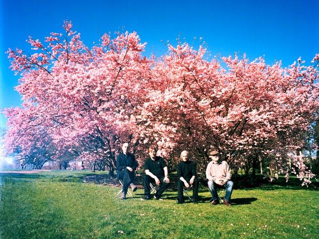 Vier Männer vor einem grossen, rosa blühenden Baum.