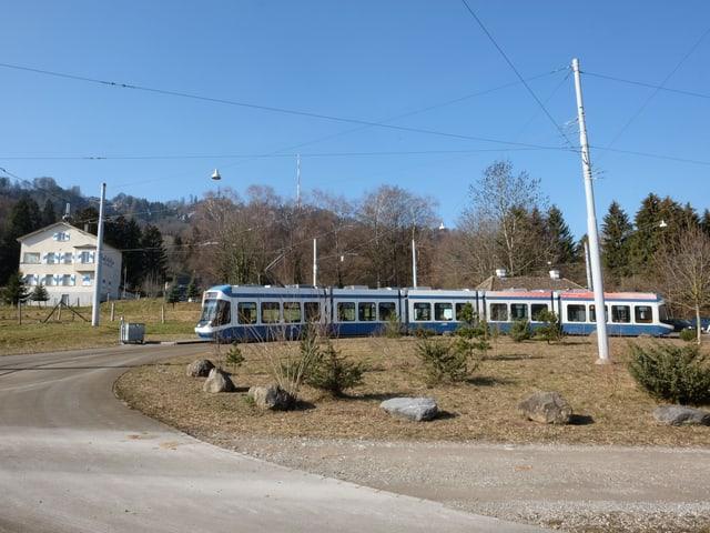 Ein Tram steht mitten im Grünen, im Hintergrund ist der Uetliberg zu sehen.