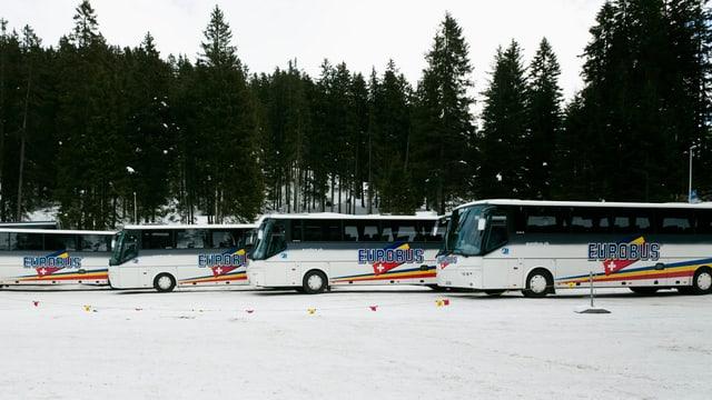 Vier Eurobusse auf einem schneebedeckten Parkplatz in der Lenzerheide.